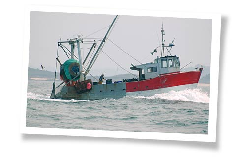 Bateau de pêche Capitaine Nat
